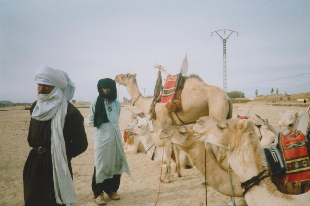 Tuareg tribesmen and their camels, Tamanrasset, Algeria.